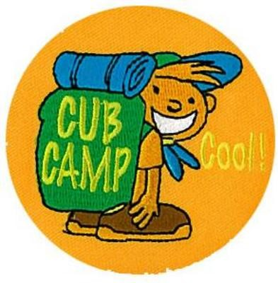 cub camp cartoon